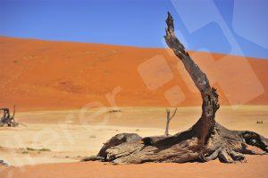 Die Wüste von Namibia